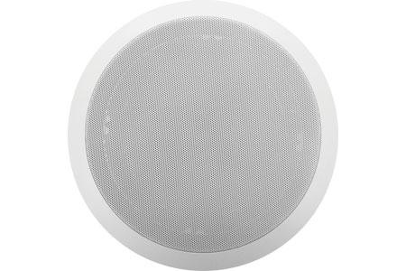 Viking 40TB-IP Speaker